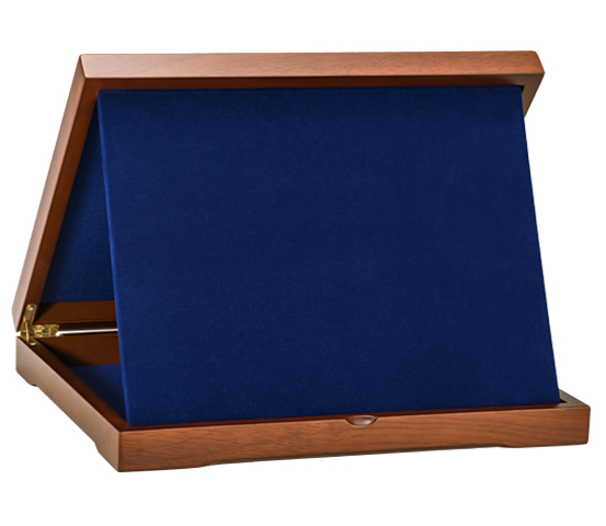 Wooden Boxes with Velvet AS 30