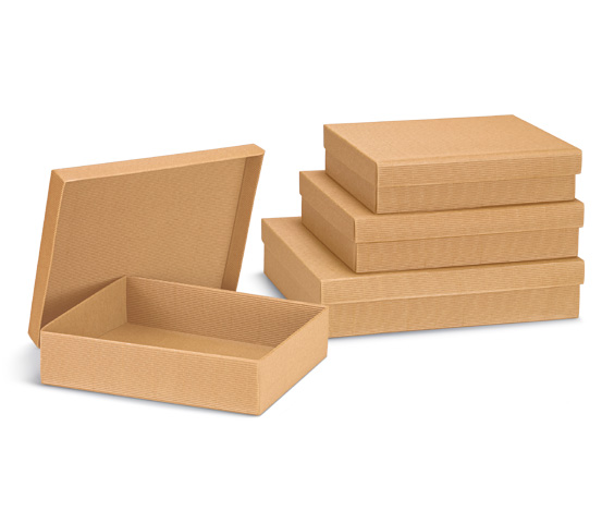 Cardboard Boxes with Lid Series SC 100